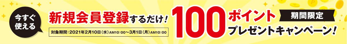 新規会員登録するだけ! 100ポイント プレゼントキャンペーン