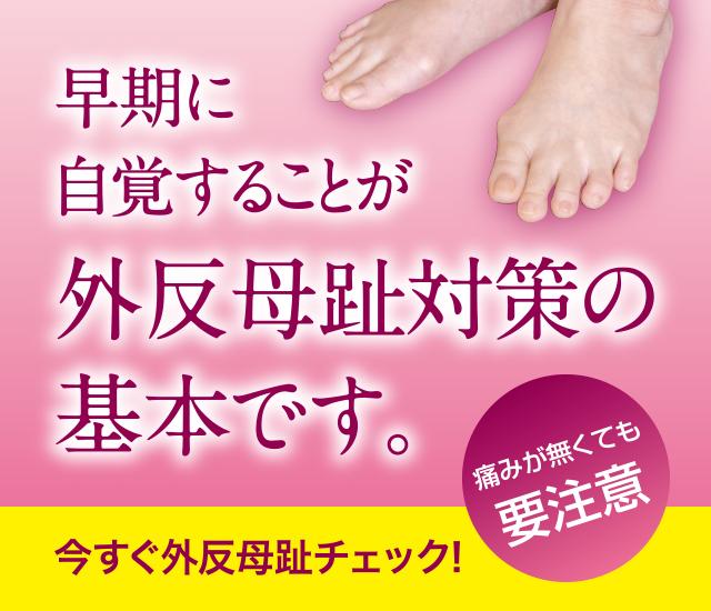 /images/slider/slider-gihanbosi_sp.jpg